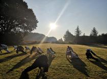 Morgentræning i morgensolen
