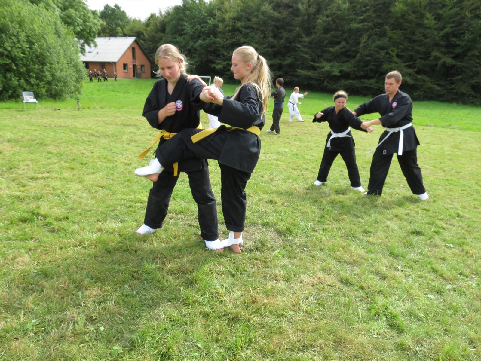 De voksne træner kata