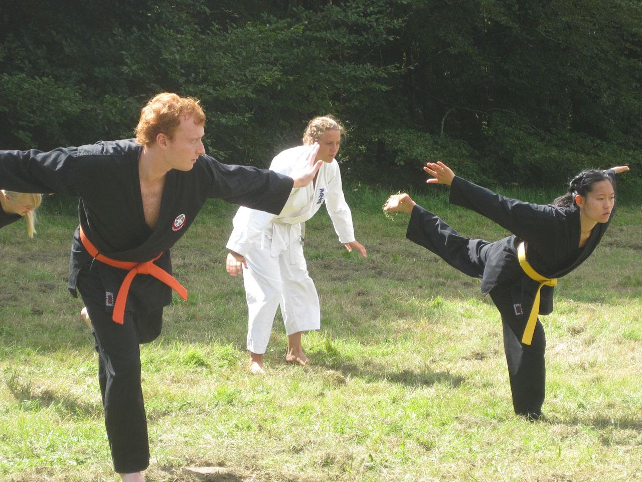 Lasse, Anne og Marie kæmper med bufa...