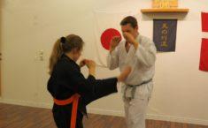 Træn karate i Vejle og lær at sparke røv