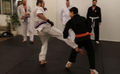 Karate der fungerer i praksis