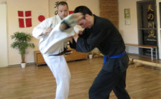 Karate - effektiv i kamp