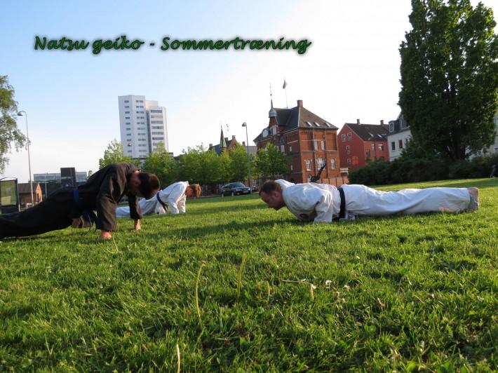 Sommertræning