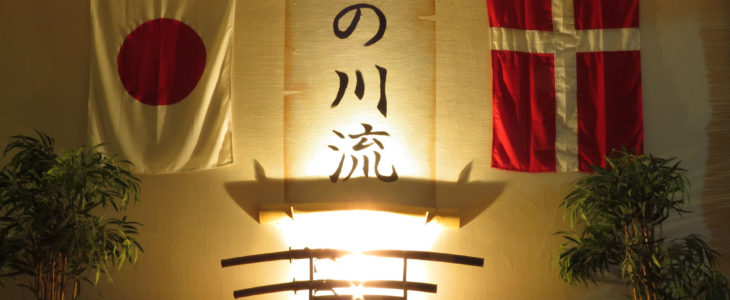 Kamiza i 2015 med natbelysning